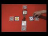 видео-обзор игры Дикие джунгли
